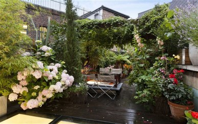 Kings_Cross_Road_roof_garden.jpg this is the garden owned by Paddy McCawley and David Ferris; they can be contacted through Lucy Ball, 07765 400663 lucy.ball@fourcommunicatins.,com