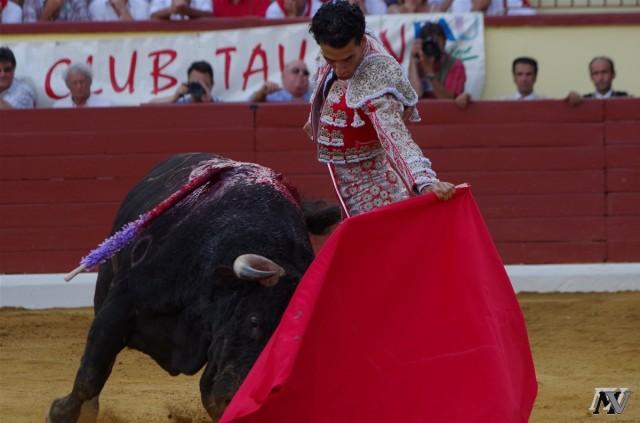 Morenito de Aranda. Orthez 2013 (2)