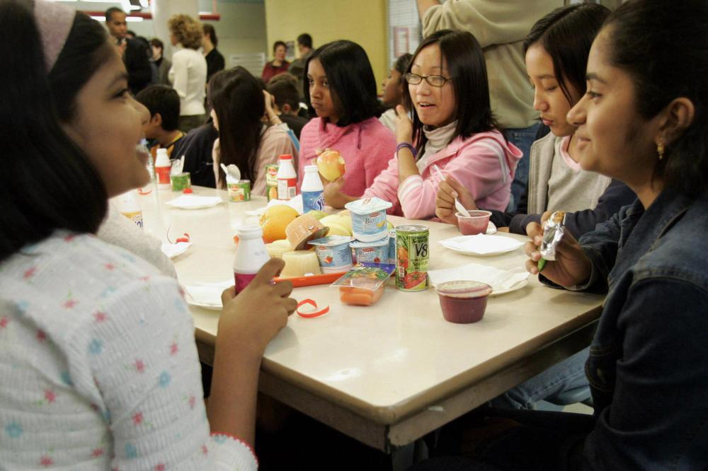 medium resolution of Ontario students get mixed results in literacy