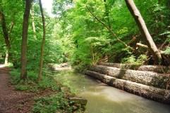 David Balfour Trail