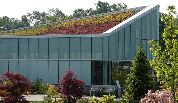 LEED-roof-sized