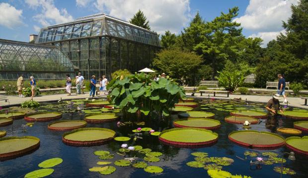 Longwood Gardens Philadelphia Tourism Pressroom