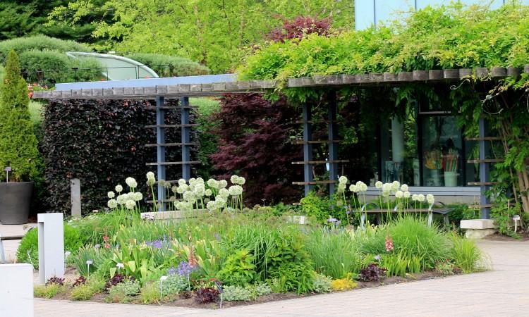 Arrival courtyard toronto botanical gardentoronto for Martin wade landscape architects