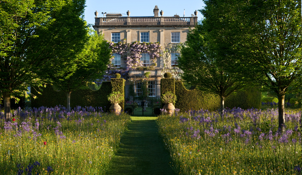 The Wild Flower Meadow, Highgrove. Andrew Lawson