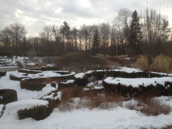 The Knot Garden under snow January 9,2013