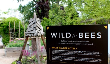 bee hotel with sign