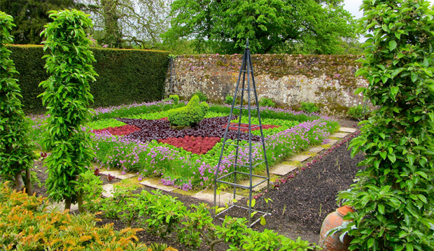 lettuce-and-chives bed--long view