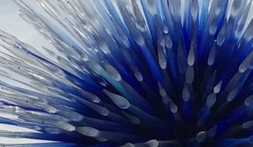 Chihuly Sapphire Star, 2010