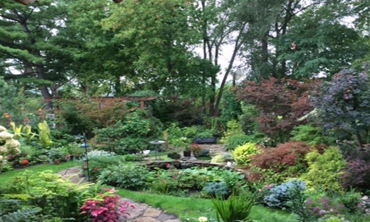 frank-kershaw-daytrip-your-own-backyard