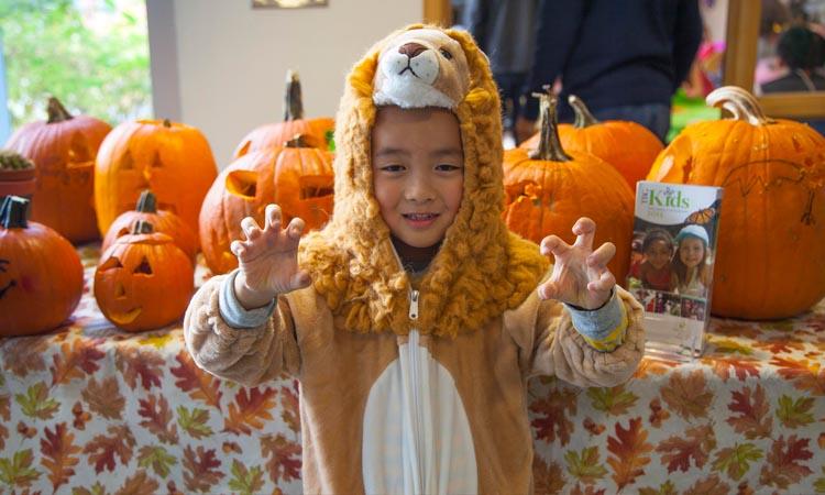 tbgkids halloween little tiger