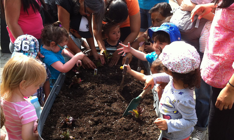 tbgkids sprout diggin in the raised bed