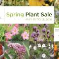 tbg plant sale 2016 web