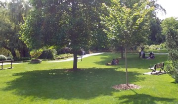 People sitting under the shade trees in Edwards Gardens