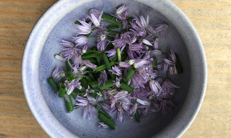 Preserving the Herbal Bounty