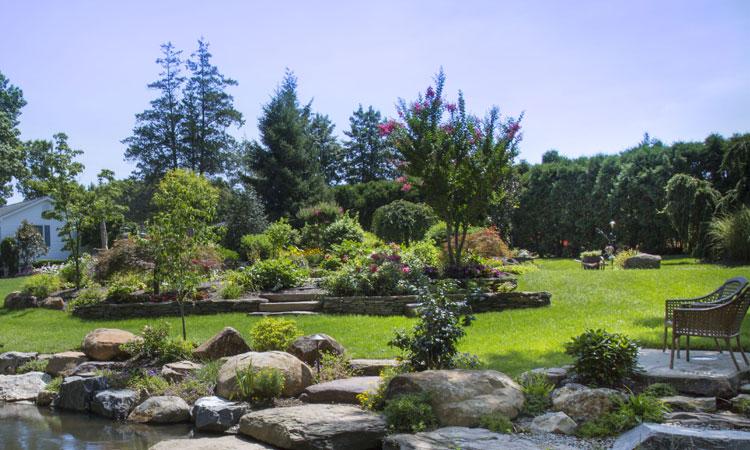 Rocks, Blocks and Wood: Understanding Hard Landscaping