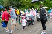 Some strollers in the back of the line as children participate in the 500m Cub Run at the Toronto Zoo Saturday.