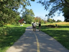 A multi-use pathway for both pedestrians and cyclists runs through the meadow