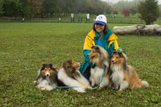 Sue Pike and her four shelties, Elliot, Isaac, Sam and Pippin all tried for best trick.
