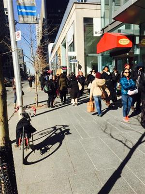 TTC commuters lining up along Bloor Street Tuesday due to TTC shutdown of Yonge subway line: environmental leak posing a hazard