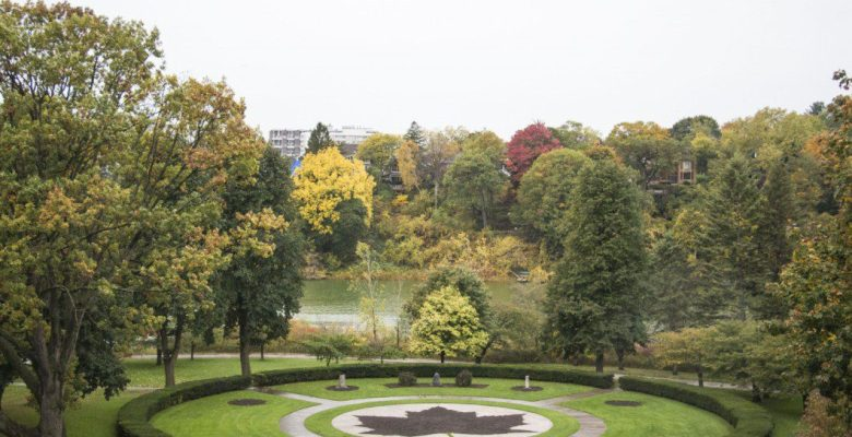 High Park's Maple Leaf Garden