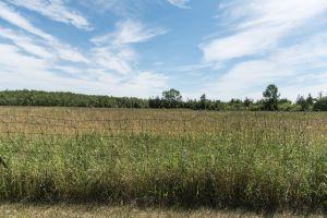 Barn_PE_County-8.jpg