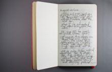 Journal Reflections: Greg Kearney