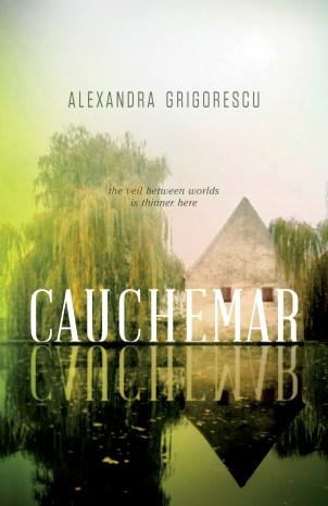 Cauchemar by Alexandra Grigorescu
