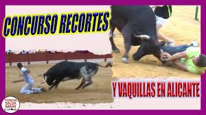 Concurso recortes y vaquillas en Alicante