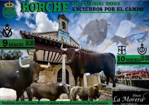 TOROS HORCHE 9 OCTUBRE 2021