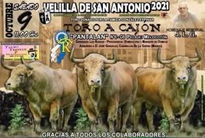 TOROS VELILLA DE SAN ANTONIO 9 DE OCTUBRE 2021
