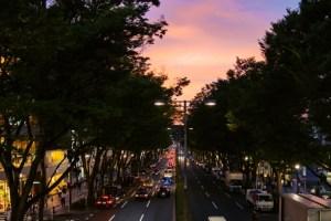 夕暮れの表参道