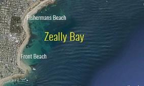 zealley map