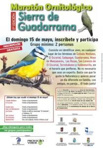Maratón Ornitológico Sierra de Guadarrama