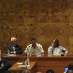 Pleno 11 de junio en Torrelodones