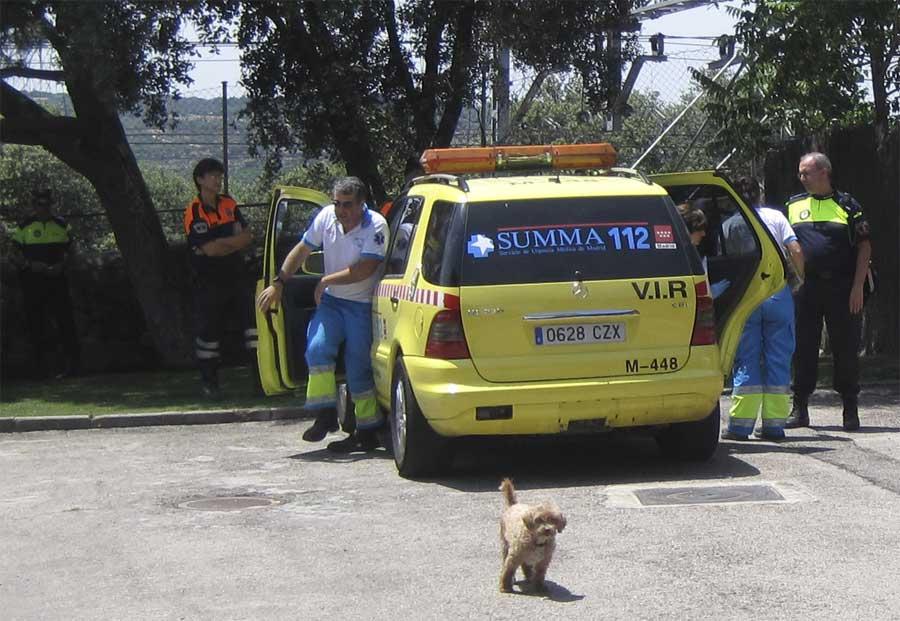 Protección Civil, Policía Local y SUMMA 112 asisten a un llamado de emergencia