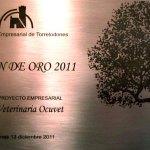 Premio Lodón de Oro Proyecto Empresarial 2011