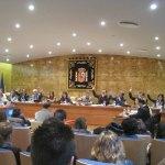 Uanimidad del Pleno para conceder al Minifútbol la Medalla de Torrelodones a la Participación Ciudadana