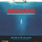 "Festival de cine de Torrelodones ""Micorto 2012"""