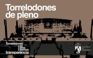 Pleno ordinario del Ayuntamiento de Torrelodones, 10 de julio de 2012