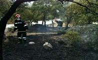 Incendio en la Avenida de la Dehesa de Torrelodones