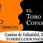 English Learning Show, para aprender inglés y divertirse en El Toro Copas