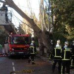 Intervenciones por fuertes vientos en Torrelodones