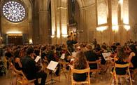 Orquesta Fusio Sant Cugat