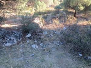 Camino de las Jaras, Las Marías - Torrelodones