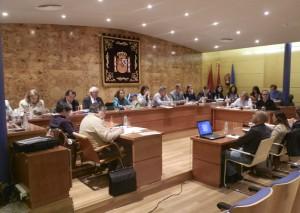 Pleno Ayuntamiento de Torrelodones