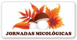 Jornadas micológicas 2014 en Hoyo de Manzanares