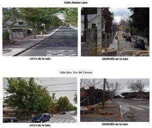 Tala de árboles en calles de Torrelodones (Fotos: Grupo Municipal acTÚa)