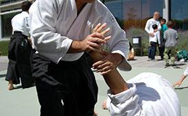 Aikido en Torrelodones