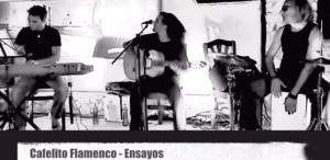cafelito-flamenco-marbore