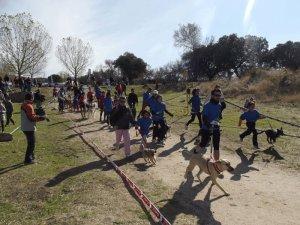 Canicross 2011 en Collado Villalba (Foto: Ayto. C. Villalba)